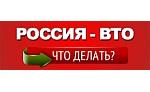 Россия — ВТО. Что делать?